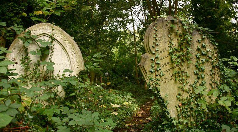Колонки: 7 секретов Abney Park Cemetery