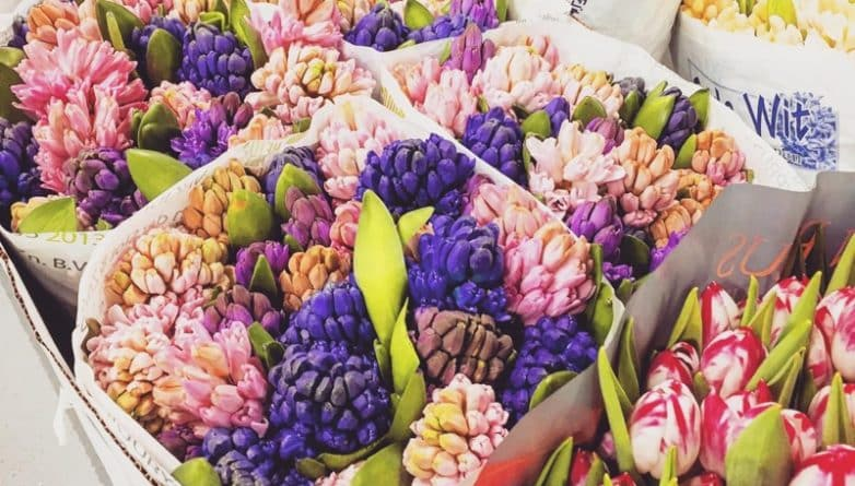 Досуг: Covent Garden Flower Market открылся возле Battersea Power Station