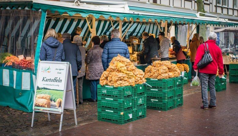 Общество: Британские фермеры опасаются за свой бизнес после выхода страны из ЕС
