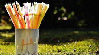 Компании по переработке отходов хотят ввести налог на пластиковые трубочки