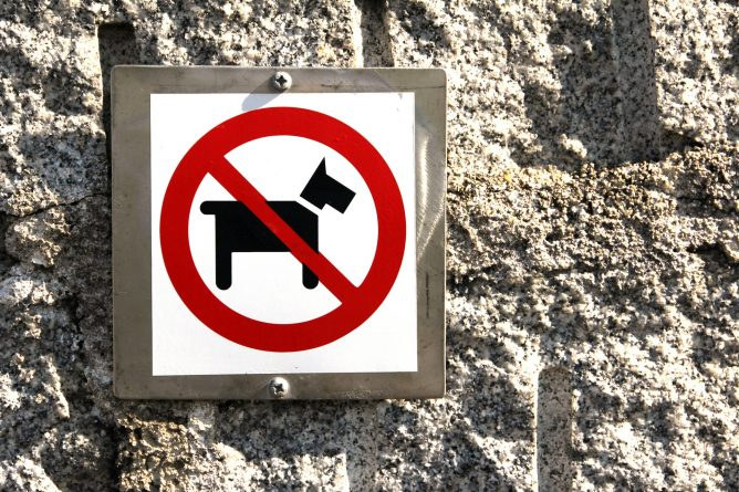 Юмор: В метро Нью-Йорка перестали пускать с собаками