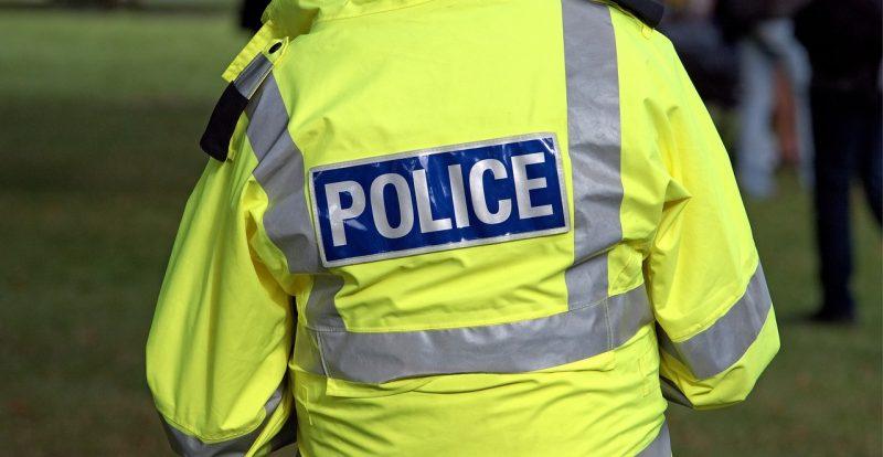 Происшествия: В Шотландии упавшее дерево убило водителя