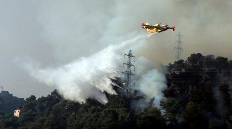 В мире: Юг Европы охватили лесные пожары