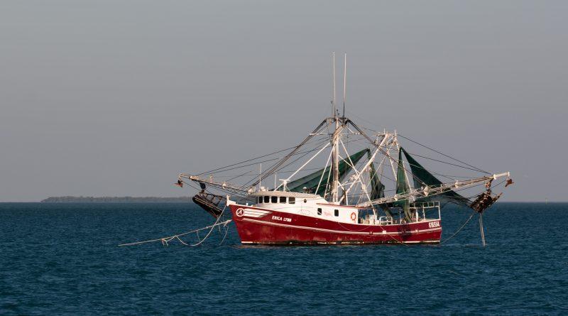 Политика: Великобритания закрыла свои воды для иностранных рыбаков