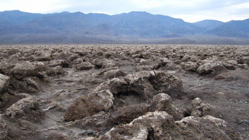 В мире: Земле грозит новое массовое вымирание