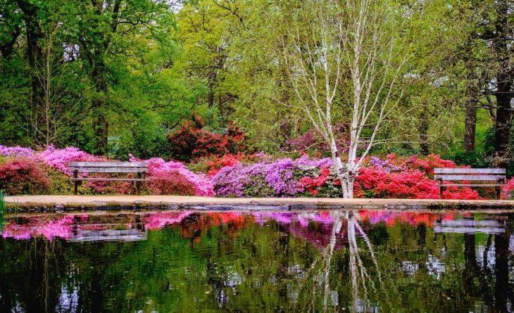 Путешествия: Самые красивые места Британии: Плантация Изабеллы