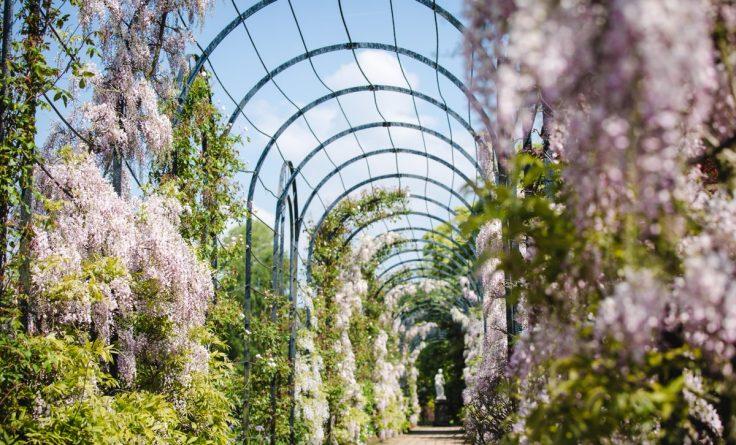 Досуг: Пять самых красивых садов Великобритании