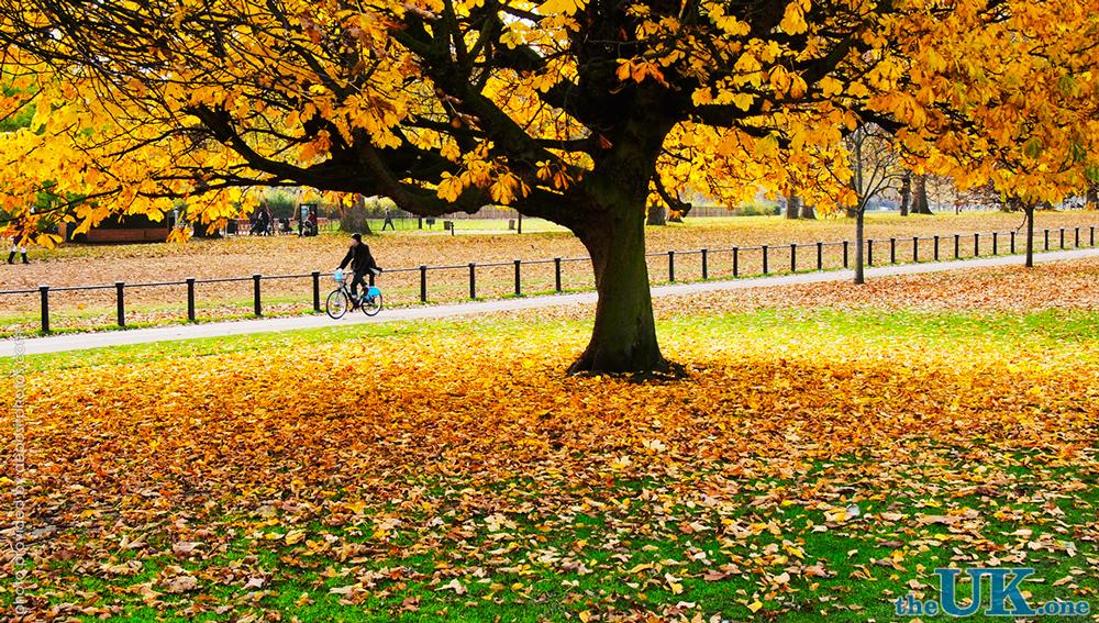 Осень в Лондоне