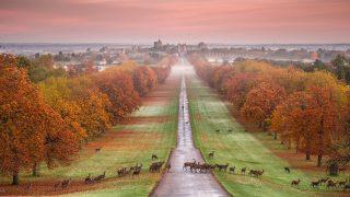 Самые красивые места Британии: Виндзор