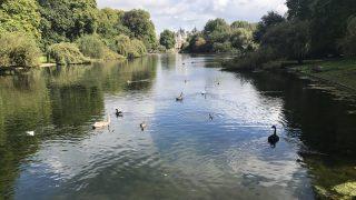 Живописные озера Лондона ǀ Часть 2