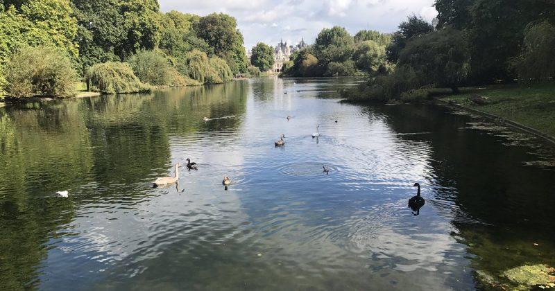 Досуг: Живописные озера Лондона ǀ Часть 2
