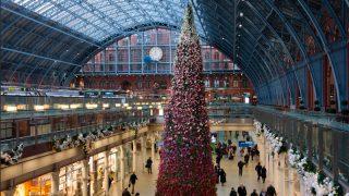 Сент-Панкрас украсил рождественскую ель цветами