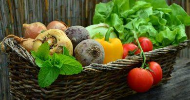 Кто накормит мегаполис? Свежие продукты местного производства в городе