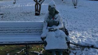 Врачей Уэст-Мидленса вызвали помочь... статуе!