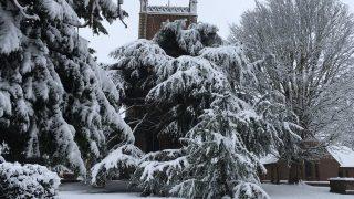Некоторые школы сегодня все еще закрыты, несмотря на потепление