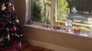 Праздничный стеклянный шар стал причиной пожара в доме