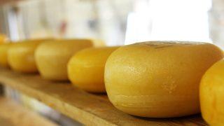 Британцы могут приобрести сыр со вкусом джина к рождественскому столу