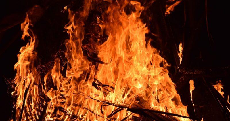 Происшествия: Кенсингтон: пожар в школе мог погубить жизни сотен детей