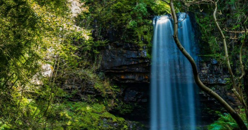 Галерея: Самые красивые места Британии: водопад Хенгрид