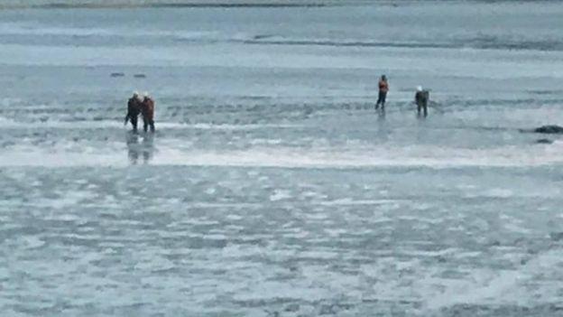 Мальчик спасен из прибрежного ила в Шотландии рис 2