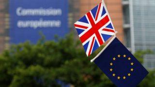 Brexit: Великобритания намерена оспорить предложение ЕС о переходном периоде