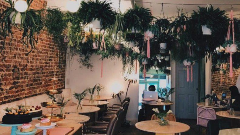 Досуг: Самое фотогеничное и инстаграмное кафе в Лондоне: Palm Vaults в Хакни