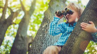 В Лондоне начнут штрафовать на £500 за лазанье по деревьям, воздушных змеев и крикет в парках
