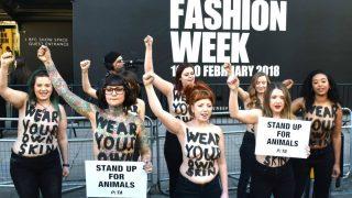 Открытие Лондонской недели моды ознаменовалось топлес-протестом защитников животных