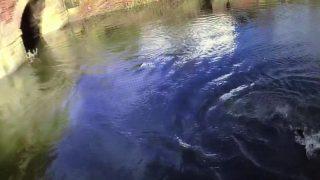 Не умеющий плавать британский полицейский спас утопающего в глубокой реке