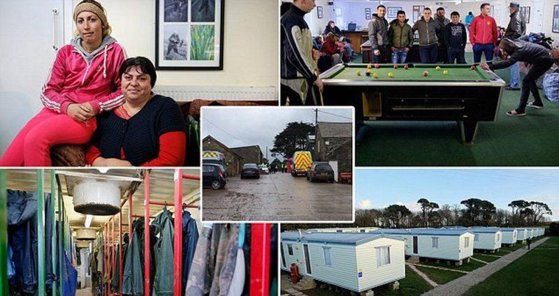 Общество: Спасенные мигранты из Корнуолла хотят вернуться на ферму
