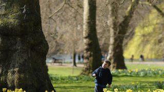 Приняты новые правила поведения в парке Уондсуэрт. Детей штрафовать не будут