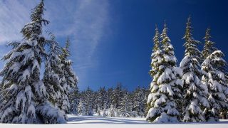 Внезапное стратосферное потепление может привести к падению температуры до –22°C