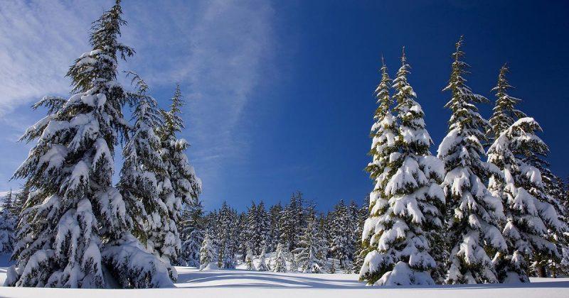 Погода: Внезапное стратосферное потепление может привести к падению температуры до –22°C