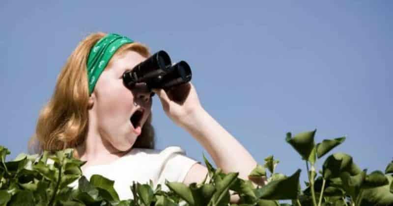 Общество: Шокированная британка услышала доносящиеся из ее сада пикантные звуки и обратилась за помощью в интернет