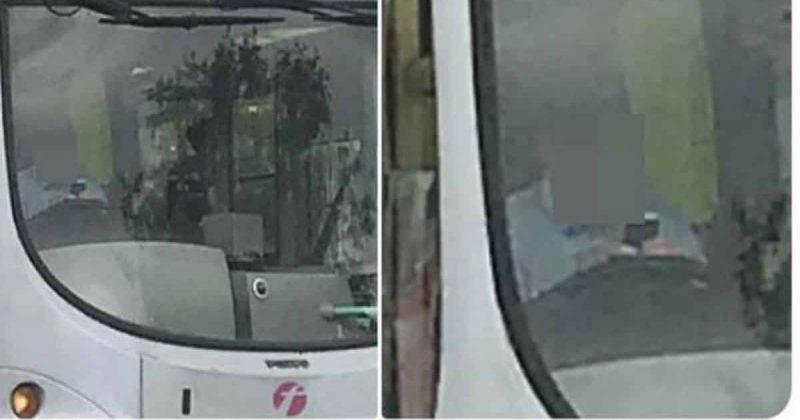 Общество: Водителя First Bus поймали на горячем, когда он болтал по телефону за рулем