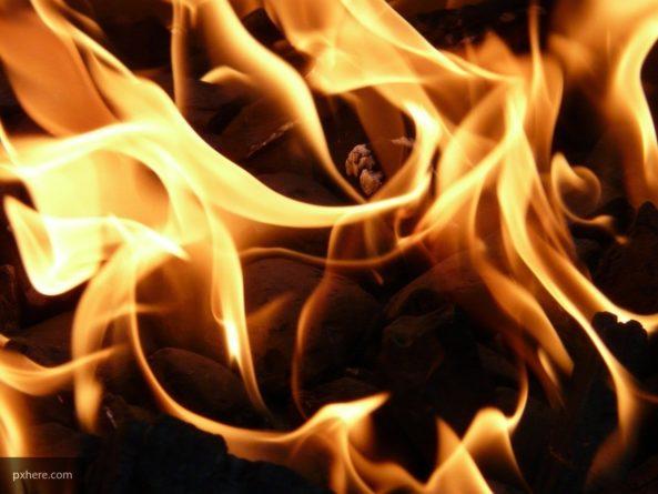 Пожар разрушил двадцать квартир в жилом доме в Лондоне