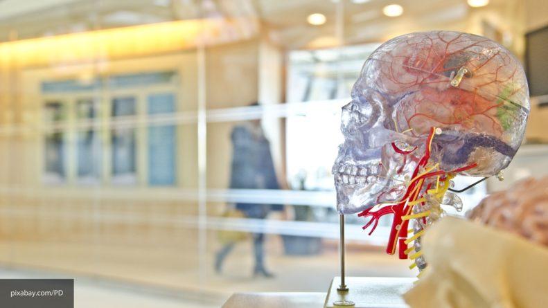 Английские ученые выявили признак проявления болезни Паркинсона