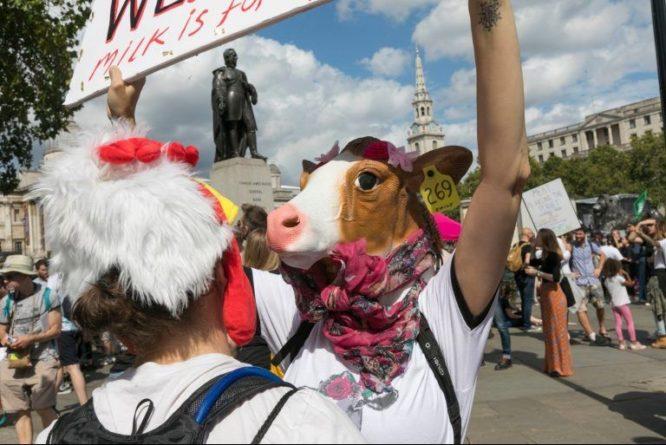 Марш в защиту прав животных собрал в Лондоне двенадцать тысяч человек