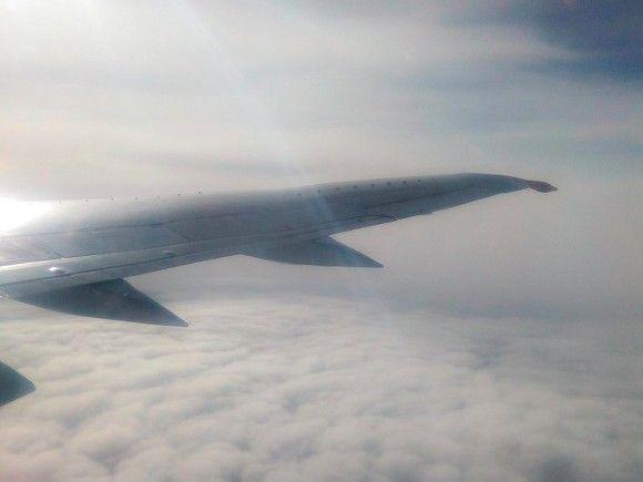 Общество: В аэропортах Британии могут разрешить провоз жидкостей в самолете