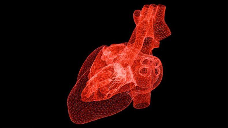 Общество: Новый ИИ-алгоритм с высокой точностью определяет риск сердечного приступа