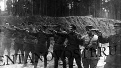 Общество: Бессмысленный и беспощадный: какой теракт совершил Сталин в сентябре 41-го