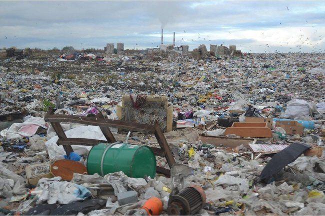Общество: Если из мусора делать пончики, у экоактивистов не останется работы