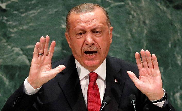 Общество: NoonPost (Египет): реакция Эрдогана на заявления мировых лидеров об операции «Источник мира»