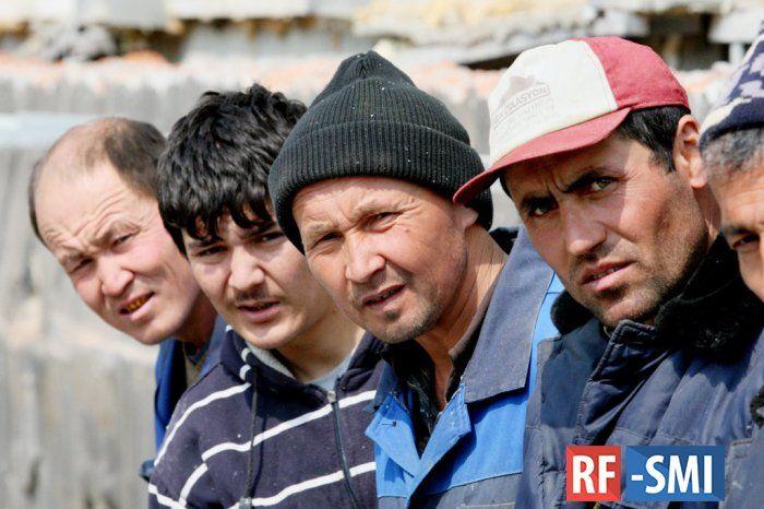 Эксперт: Мигрантов в России 8% от численности населения
