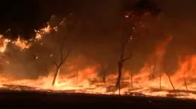 Общество: Пожары в Лос-Анджелесе, 100 тыс человек покинули дома. ВИДЕО - Cursorinfo: главные новости Израиля