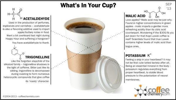 Общество: Кофе может помочь избежать ожирения