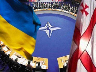 Общество: Рада поддержала проведение в Украине весенней сессии ПА НАТО - Cursorinfo: главные новости Израиля