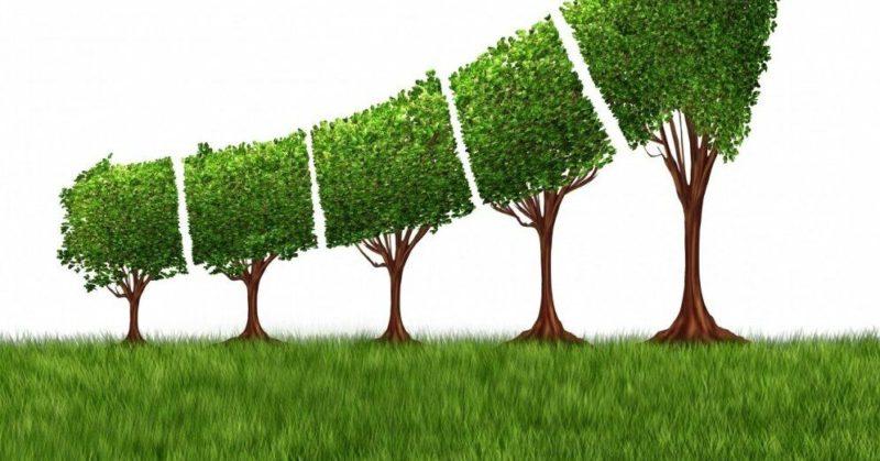 Общество: Лидеры ЕС договорились довести парниковые выбросы до нуля к 2050 году. Но Польше можно позже