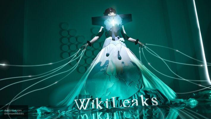 Общество: WikiLeaks доказала факт постановки химатаки в сирийской Думе в слитом документе ОЗХО