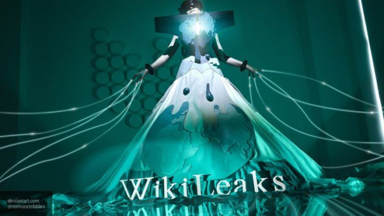 "Общество: Ресурс WikiLeaks слил документ ОЗХО, доказывающий факт постановки ""химатаки"" в Думе"